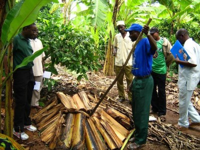 farmers trained to prepare use compost manure